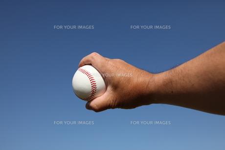 硬球と男性の手の素材 [FYI00313299]
