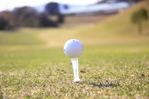ティーアップされたゴルフボールの写真素材 [FYI00313306]