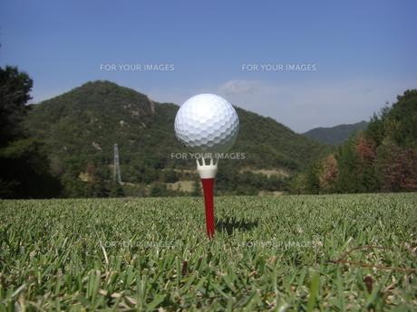 ゴルフボールの写真素材 [FYI00313313]
