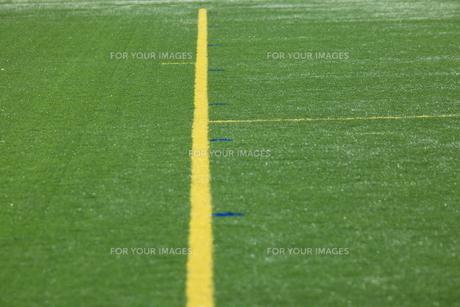 人工芝のラインの写真素材 [FYI00313321]