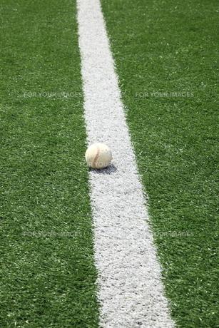 ライン上の硬球の写真素材 [FYI00313322]