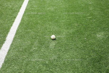 人工芝と硬球の写真素材 [FYI00313324]