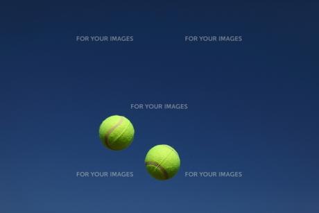 テニスボールの写真素材 [FYI00313337]
