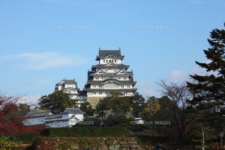 姫路城の写真素材 [FYI00313363]