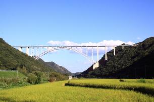 広島スカイアーチと田んぼの写真素材 [FYI00313385]