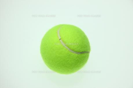 硬式テニスボールの写真素材 [FYI00313388]