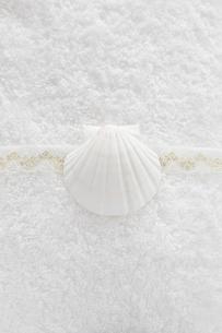 タオルと貝殻の写真素材 [FYI00313447]