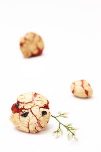 豆菓子と南天のつぼみの写真素材 [FYI00313458]