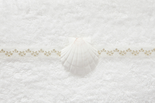 タオルと貝殻の写真素材 [FYI00313473]