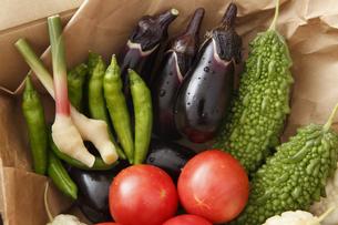 産直野菜の写真素材 [FYI00313539]