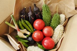 産直野菜の写真素材 [FYI00313560]