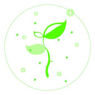 キラキラ植物の写真素材 [FYI00313573]