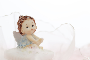 夢見る天使の写真素材 [FYI00313616]