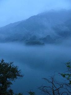 霧の素材 [FYI00313669]
