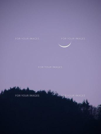 月の写真素材 [FYI00313701]