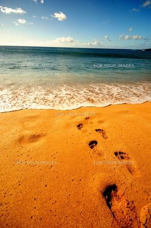 波打ち際の足跡の写真素材 [FYI00313750]