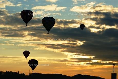 朝焼けと熱気球の写真素材 [FYI00313776]