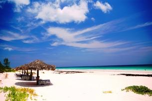 ピンクサンドビーチの写真素材 [FYI00313779]