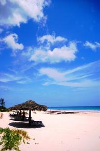ピンクサンドビーチの写真素材 [FYI00313780]