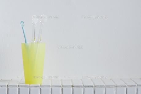 歯ブラシの写真素材 [FYI00313877]