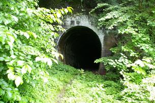 水根貨物線のトンネルの写真素材 [FYI00314513]