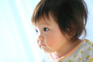 赤ちゃんイメージの写真素材 [FYI00314749]