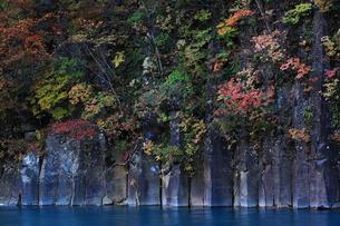 八幡平 松川渓流 紅葉の玄武岩の写真素材 [FYI00314807]
