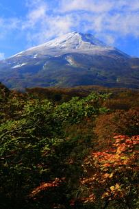 鳥海山の紅葉の写真素材 [FYI00314819]