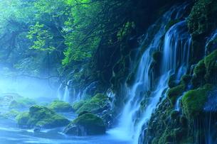 夏の元滝伏流水の写真素材 [FYI00314893]