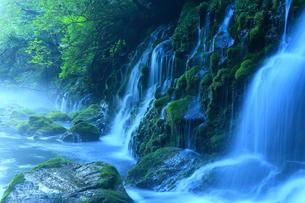 秋田県にかほ市 元滝伏流水の流れの写真素材 [FYI00314960]