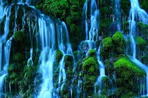 夏の元滝伏流水の写真素材 [FYI00315108]