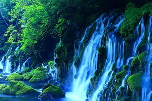 夏の元滝伏流水の写真素材 [FYI00315114]