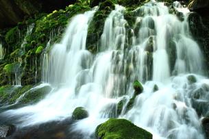 秋田県 夏の元滝伏流水の写真素材 [FYI00315247]