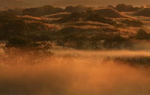 秋田県鳥海山 朝の冬師湿原の素材 [FYI00315258]