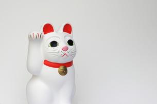 招き猫右手の写真素材 [FYI00315350]