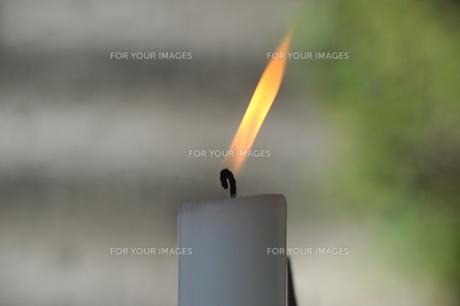 ロウソクの炎-2の素材 [FYI00315405]