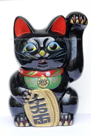 黒招き猫正面の写真素材 [FYI00315411]