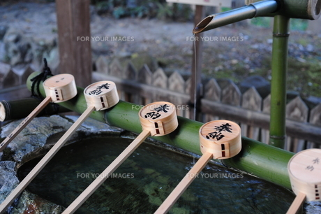 神社の手水舎の写真素材 [FYI00315454]
