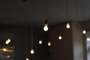 白熱電球の写真素材 [FYI00315476]