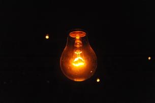 フィラメント電球の写真素材 [FYI00315496]