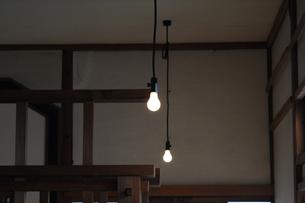 2つの裸電球の写真素材 [FYI00315502]