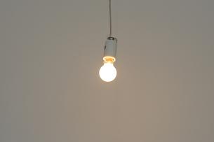 ミニ電球の写真素材 [FYI00315504]