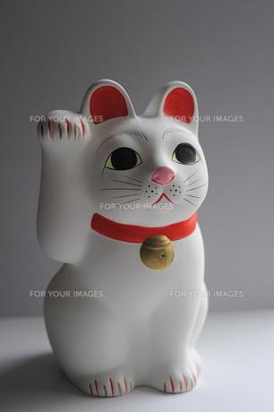 招き猫全身の写真素材 [FYI00315547]