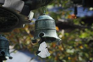 寺の釣り鐘の写真素材 [FYI00315583]