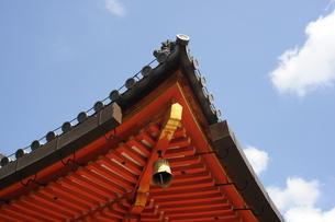 お寺の屋根の写真素材 [FYI00315607]
