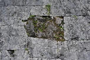 首里城の石垣の写真素材 [FYI00315666]