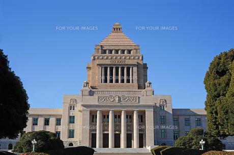 国会議事堂の写真素材 [FYI00315686]