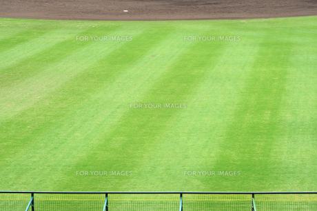 外野の芝生の素材 [FYI00315731]