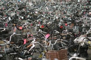 廃棄自転車-1の写真素材 [FYI00315805]