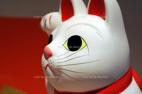 招き猫アップの写真素材 [FYI00315818]